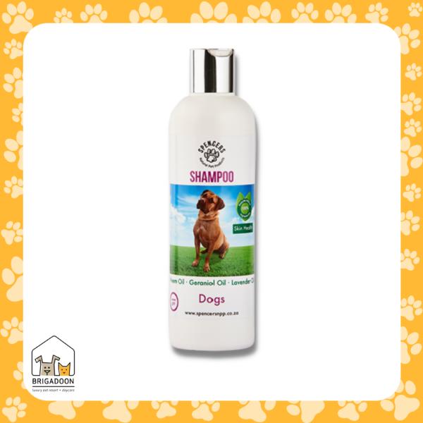 Dog Shampoo - Brigadoon