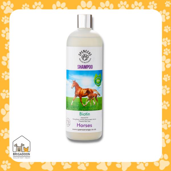Horses Shampoo - Brigadoon